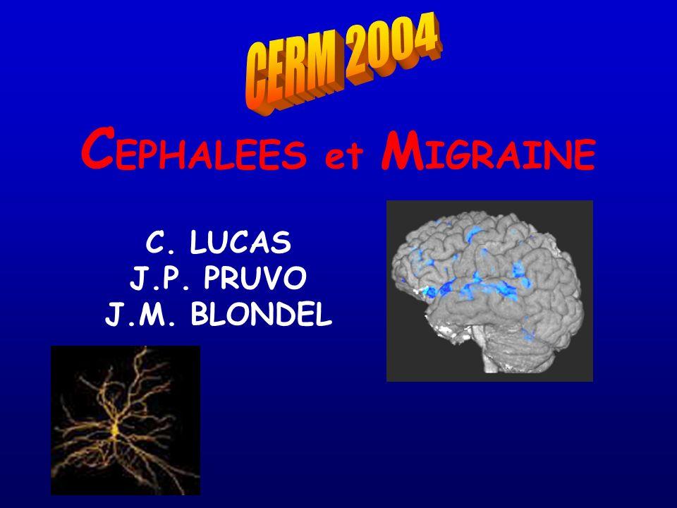C. LUCAS J.P. PRUVO J.M. BLONDEL