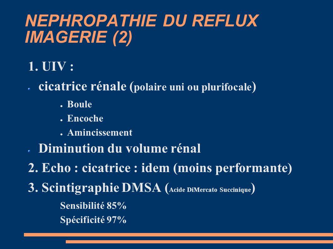 NEPHROPATHIE DU REFLUX IMAGERIE (2)