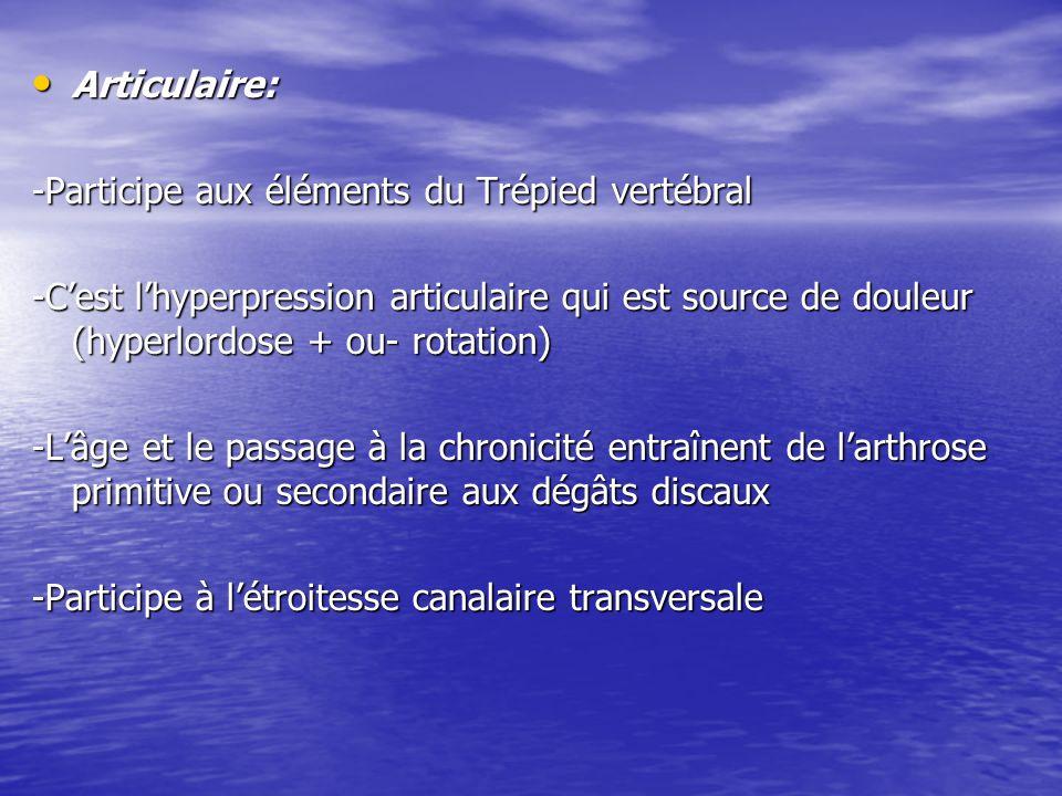 Articulaire: -Participe aux éléments du Trépied vertébral.