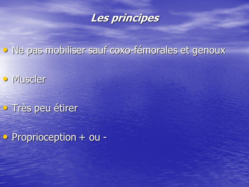 Les principes Ne pas mobiliser sauf coxo-fémorales et genoux Muscler