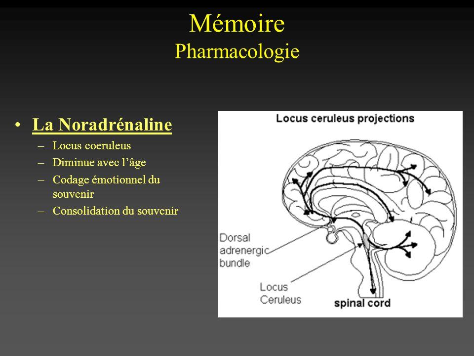 Mémoire Pharmacologie