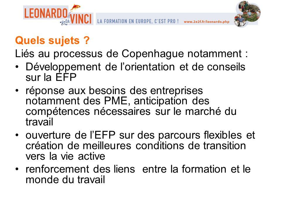 Quels sujets Liés au processus de Copenhague notamment : Développement de l'orientation et de conseils sur la EFP.