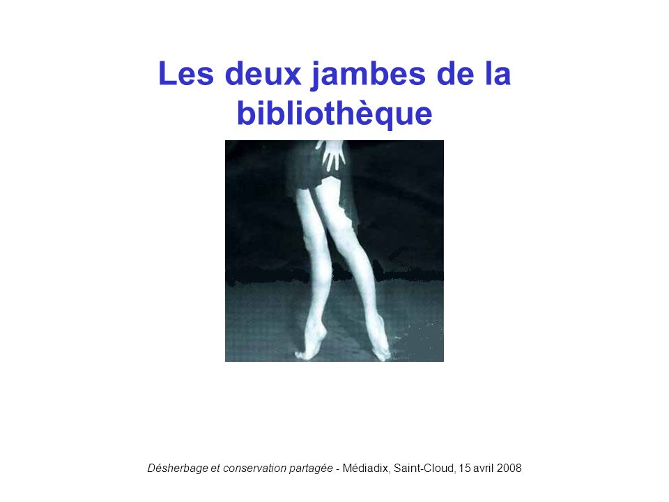 Les deux jambes de la bibliothèque