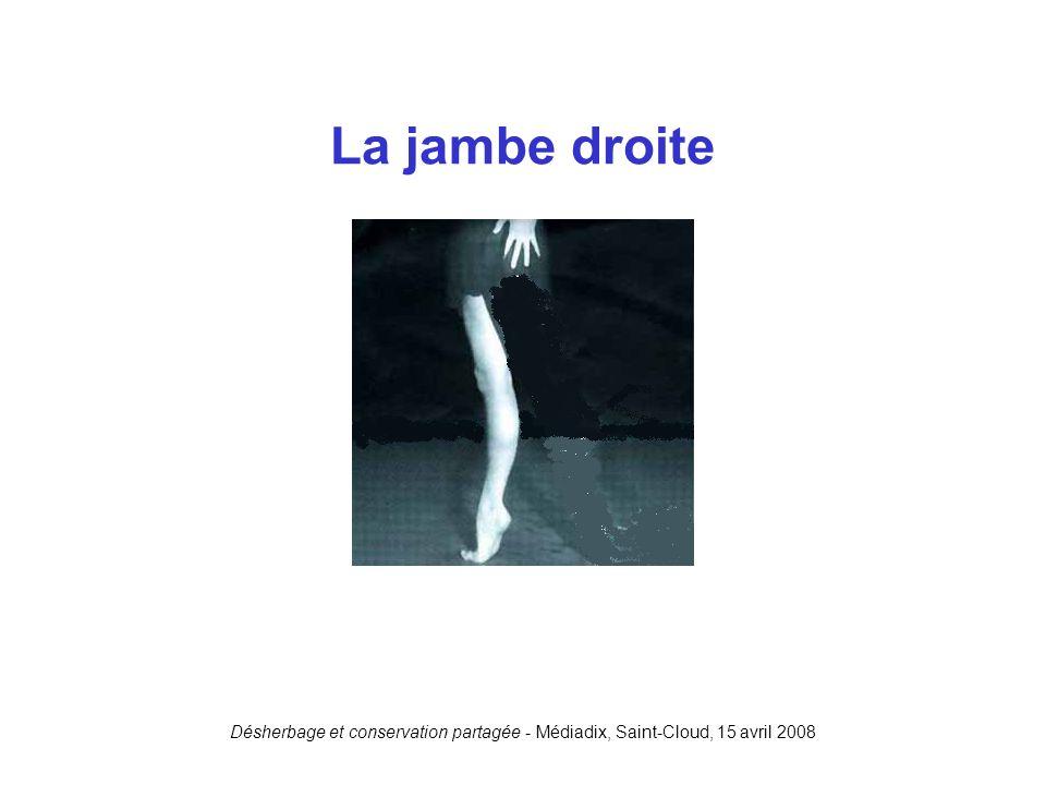 La jambe droite Désherbage et conservation partagée - Médiadix, Saint-Cloud, 15 avril 2008