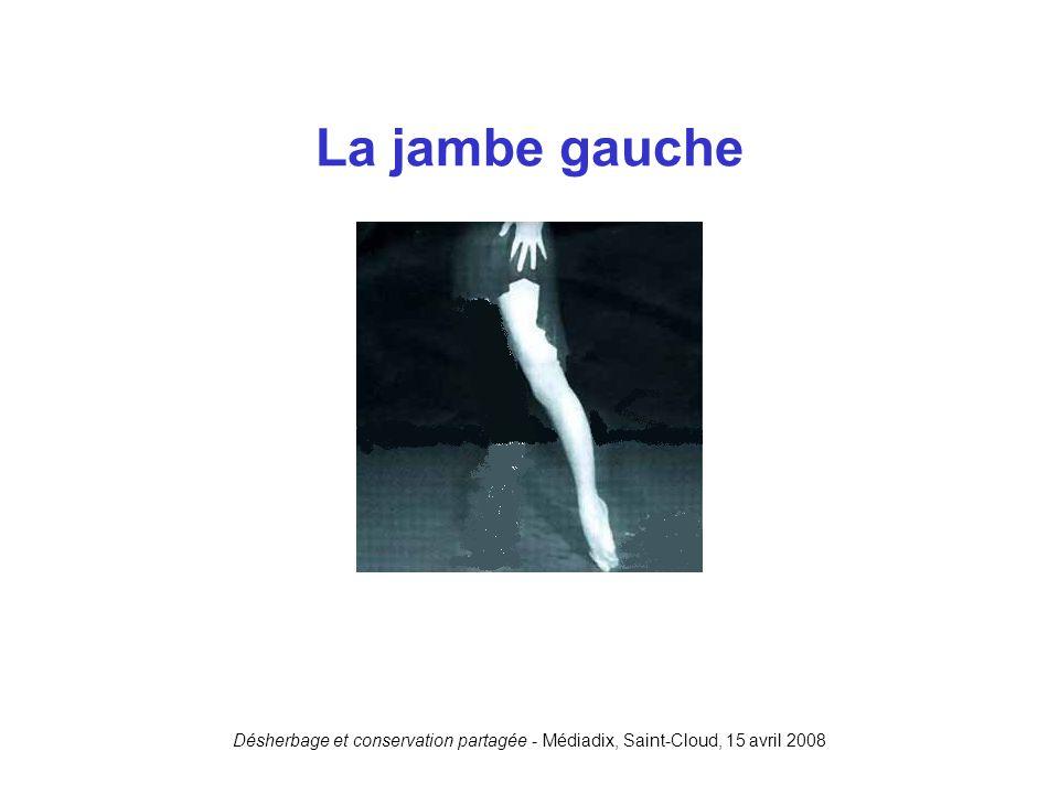 La jambe gauche Désherbage et conservation partagée - Médiadix, Saint-Cloud, 15 avril 2008