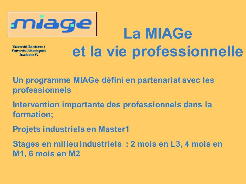 La MIAGe et la vie professionnelle