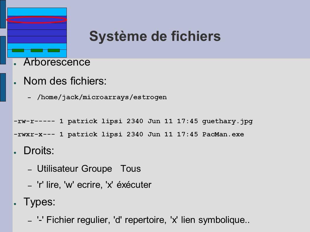 Système de fichiers Arborescence Nom des fichiers: Droits: Types: