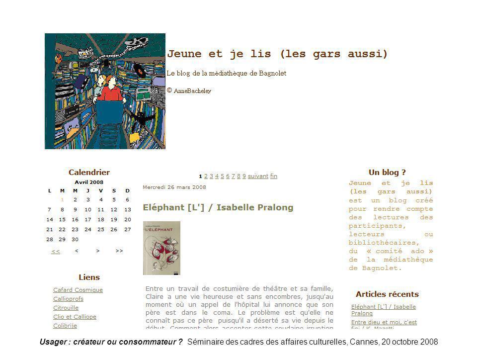 Blog-bagnolet1 Usager : créateur ou consommateur .