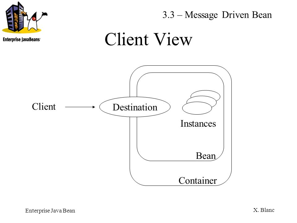 Client View 3.3 – Message Driven Bean Client Destination Instances