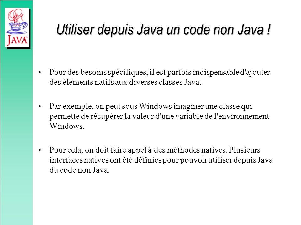 Utiliser depuis Java un code non Java !