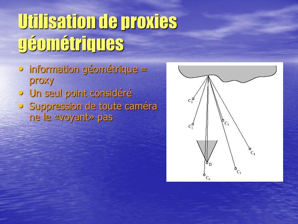 Utilisation de proxies géométriques