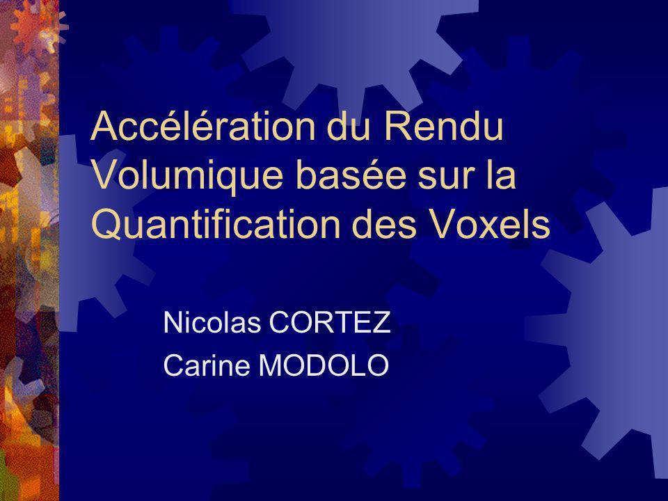 Accélération du Rendu Volumique basée sur la Quantification des Voxels