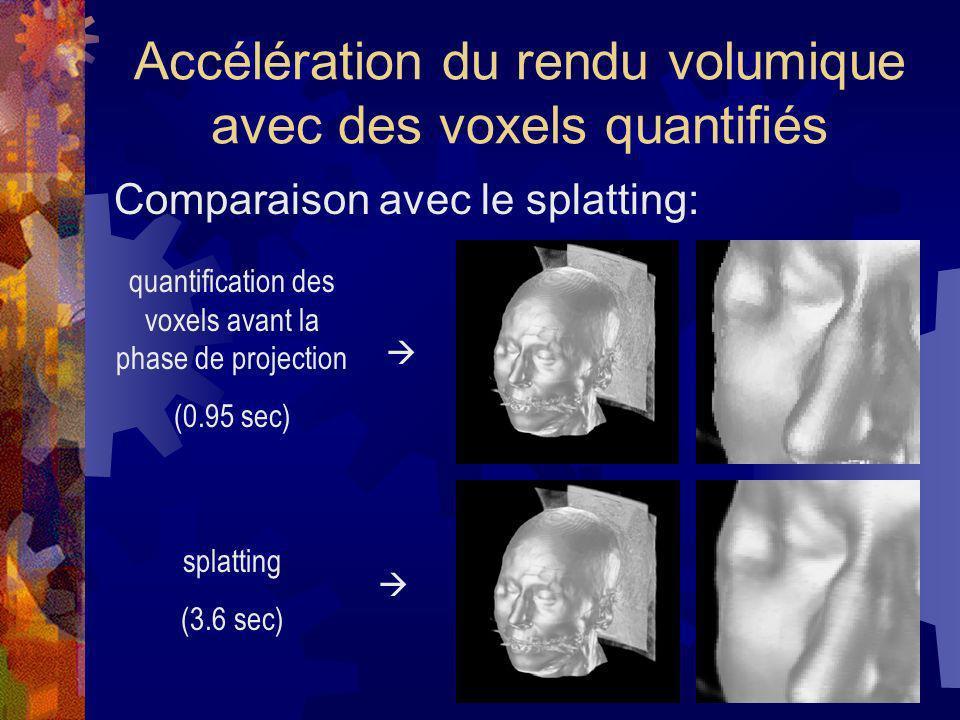 Accélération du rendu volumique avec des voxels quantifiés