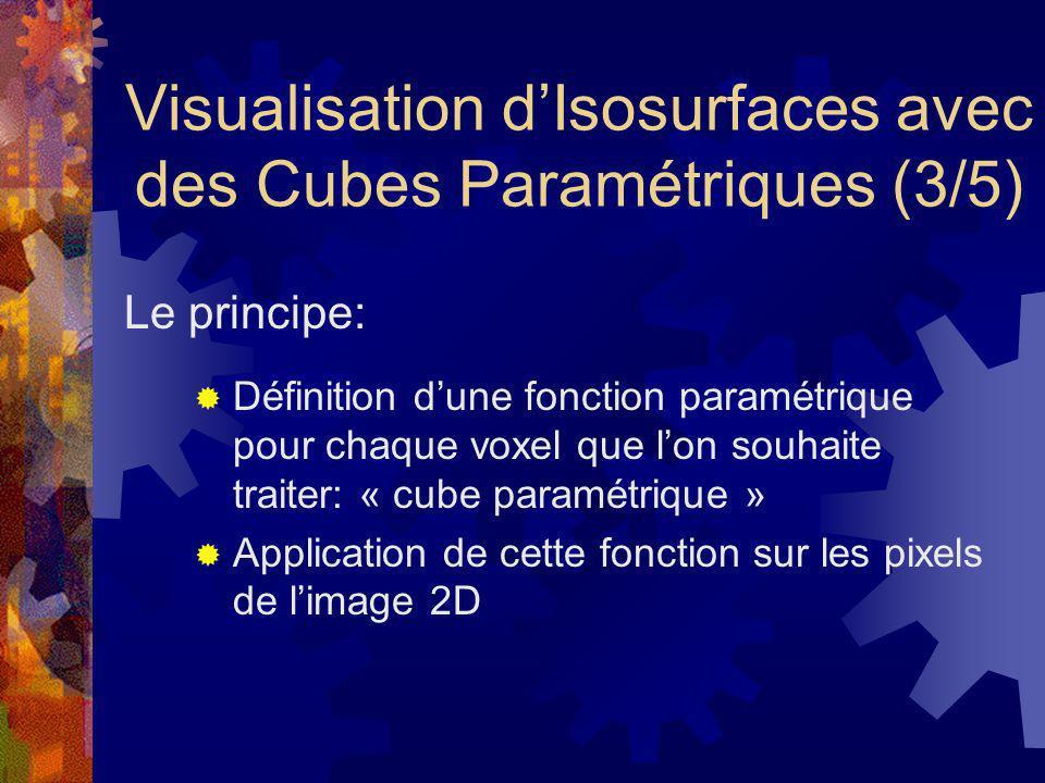 Visualisation d'Isosurfaces avec des Cubes Paramétriques (3/5)
