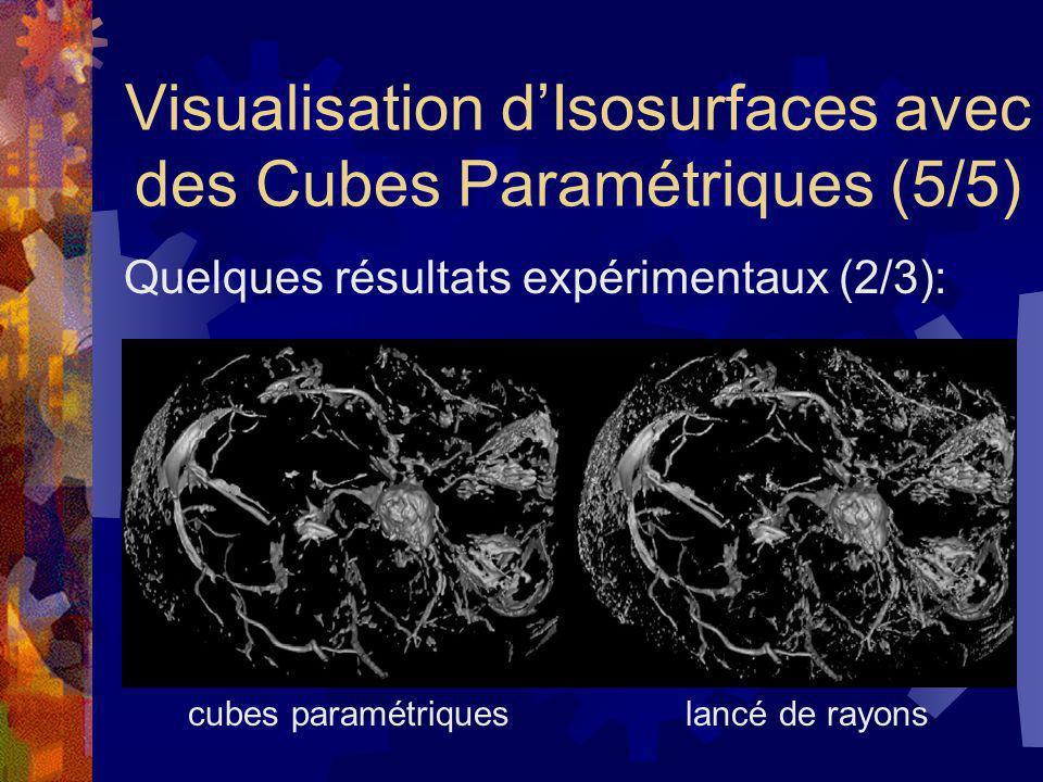 Visualisation d'Isosurfaces avec des Cubes Paramétriques (5/5)
