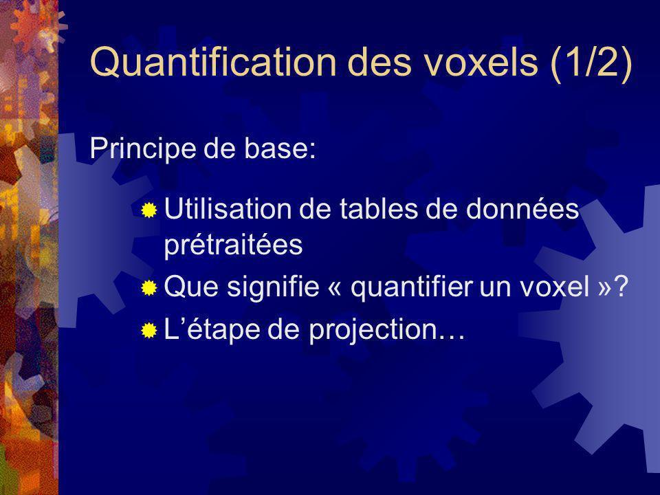 Quantification des voxels (1/2)