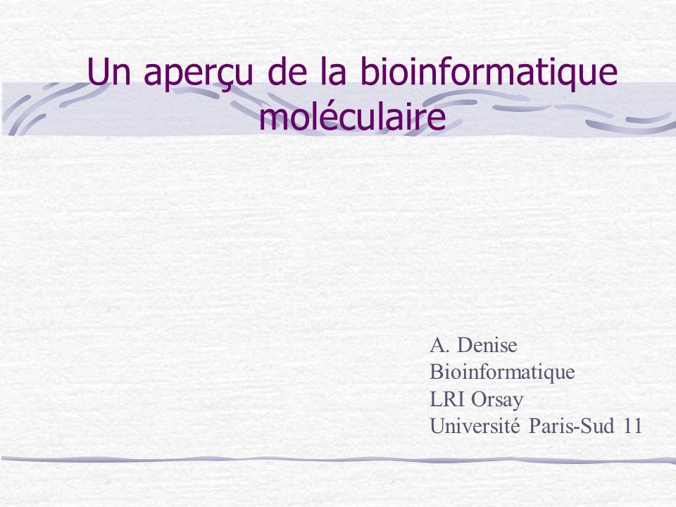 Un aperçu de la bioinformatique moléculaire