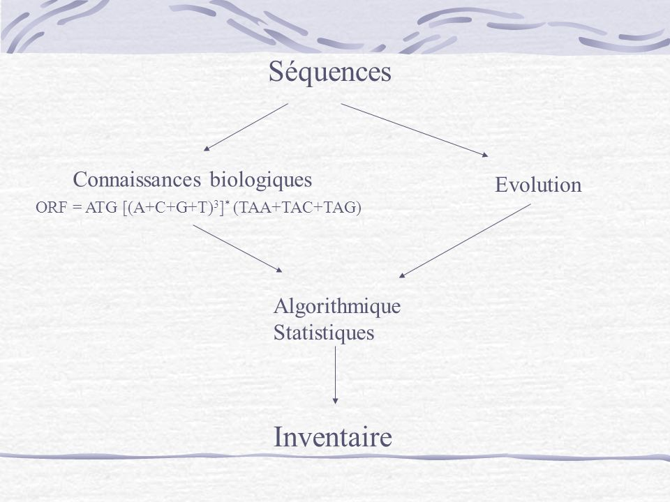 Séquences Inventaire Connaissances biologiques Evolution Algorithmique