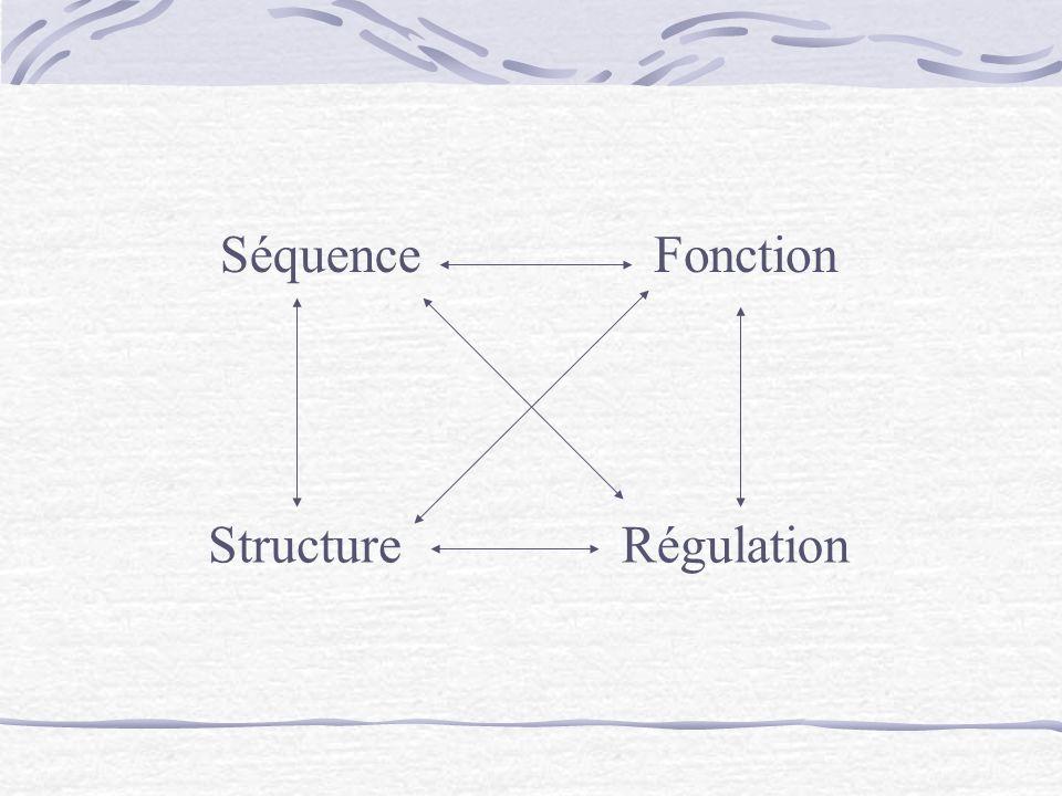 Séquence Fonction Structure Régulation
