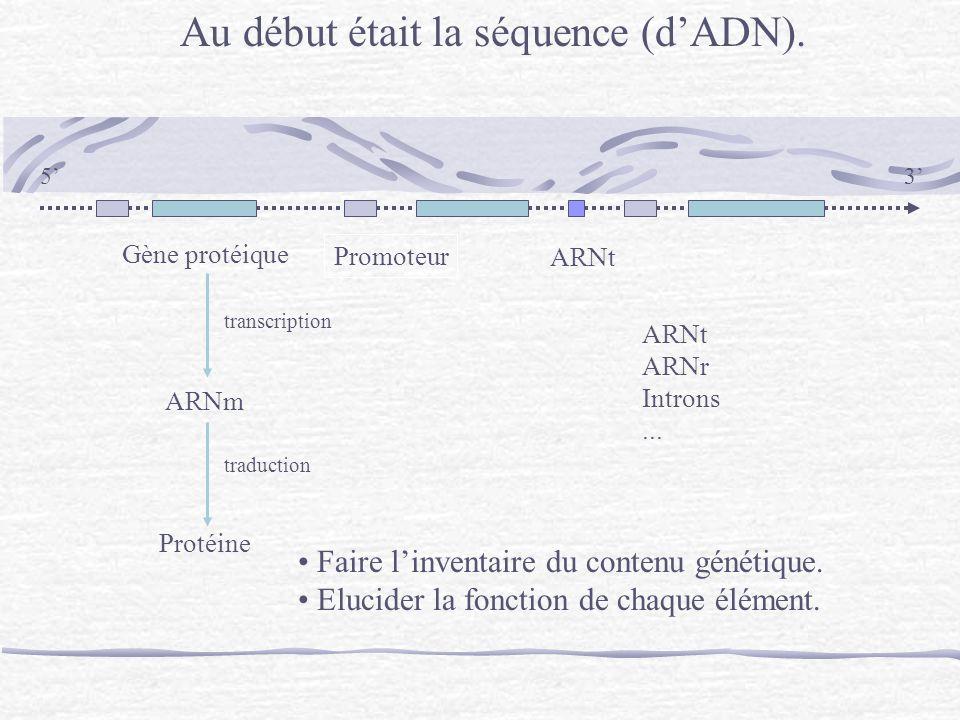 Au début était la séquence (d'ADN).