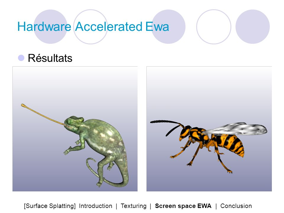 Hardware Accelerated Ewa