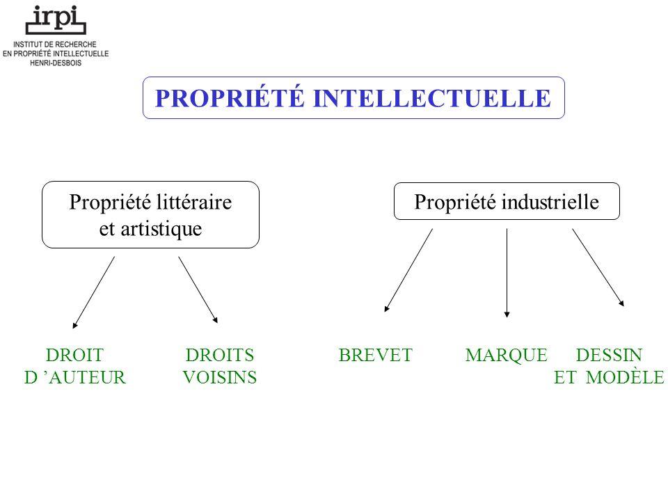 La propriété intellectuelle droit