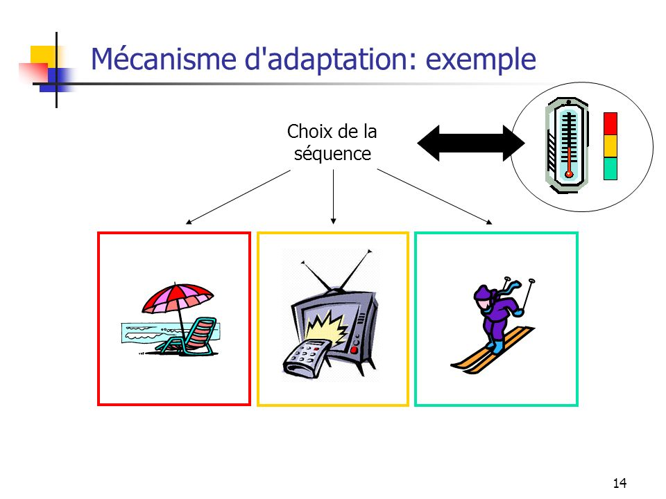 Mécanisme d adaptation: exemple