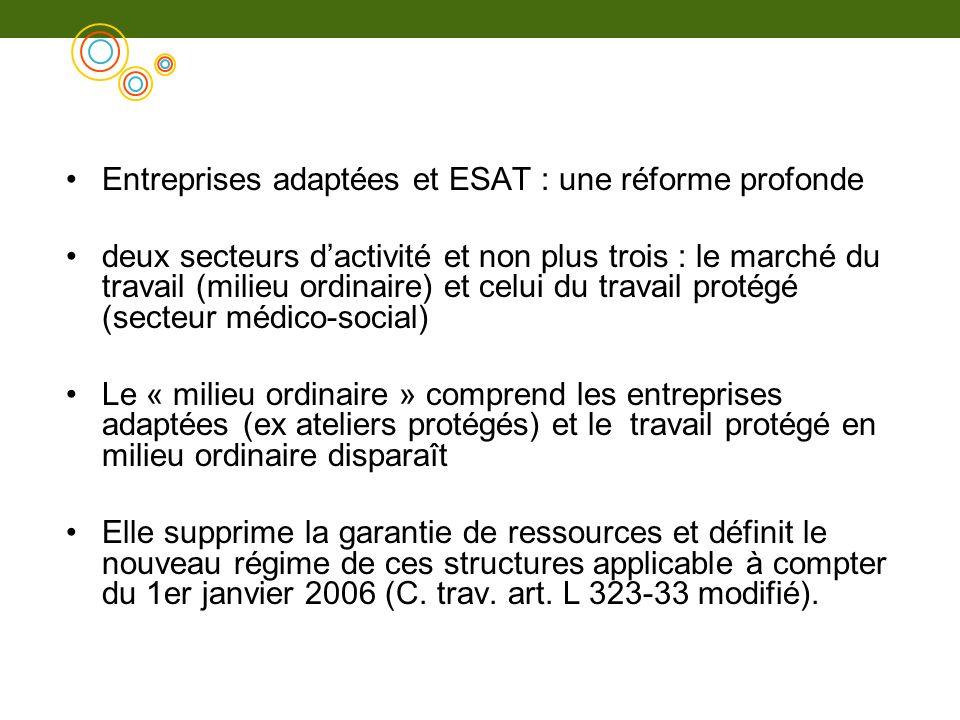 Entreprises adaptées et ESAT : une réforme profonde