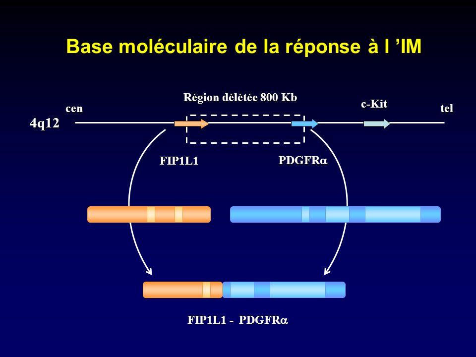 Base moléculaire de la réponse à l 'IM