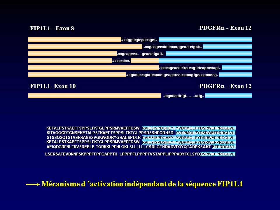 Mécanisme d 'activation indépendant de la séquence FIP1L1