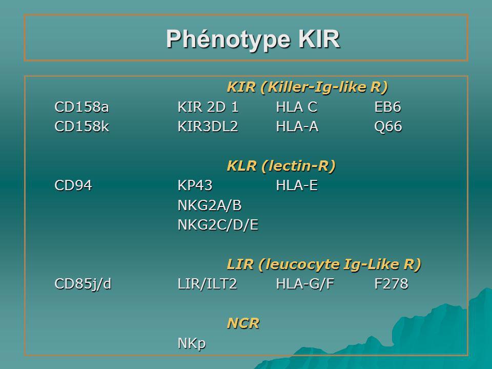 Phénotype KIR KIR (Killer-Ig-like R) CD158a KIR 2D 1 HLA C EB6