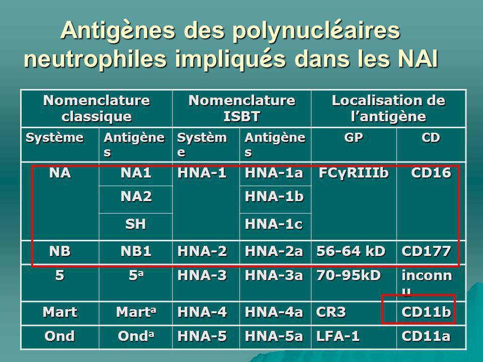 Antigènes des polynucléaires neutrophiles impliqués dans les NAI