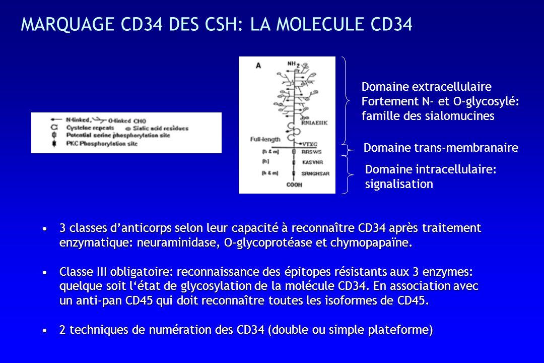 MARQUAGE CD34 DES CSH: LA MOLECULE CD34