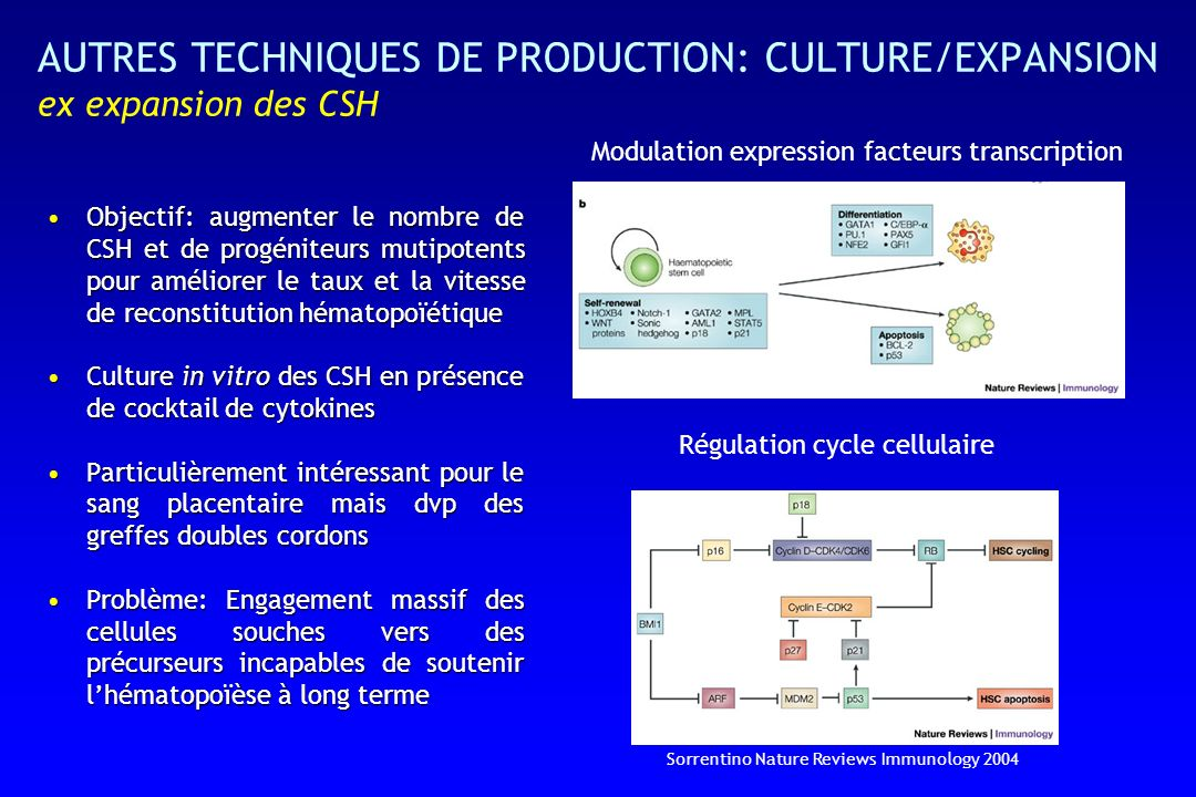 AUTRES TECHNIQUES DE PRODUCTION: CULTURE/EXPANSION ex expansion des CSH