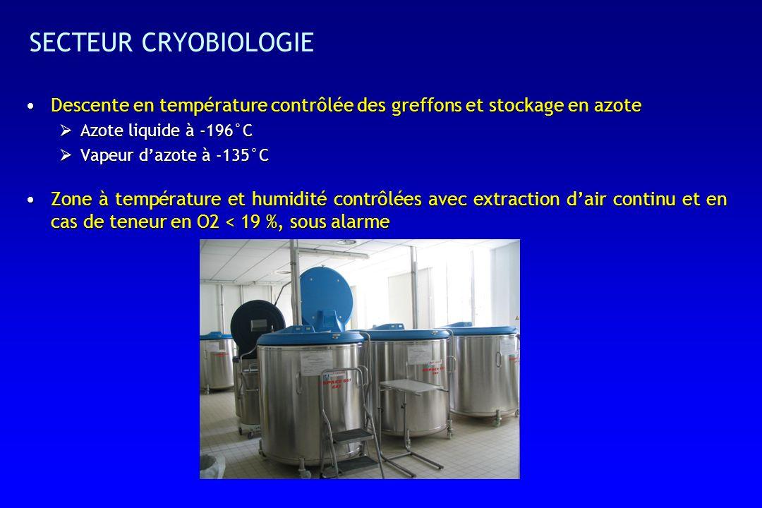 SECTEUR CRYOBIOLOGIE Descente en température contrôlée des greffons et stockage en azote. Azote liquide à -196°C.