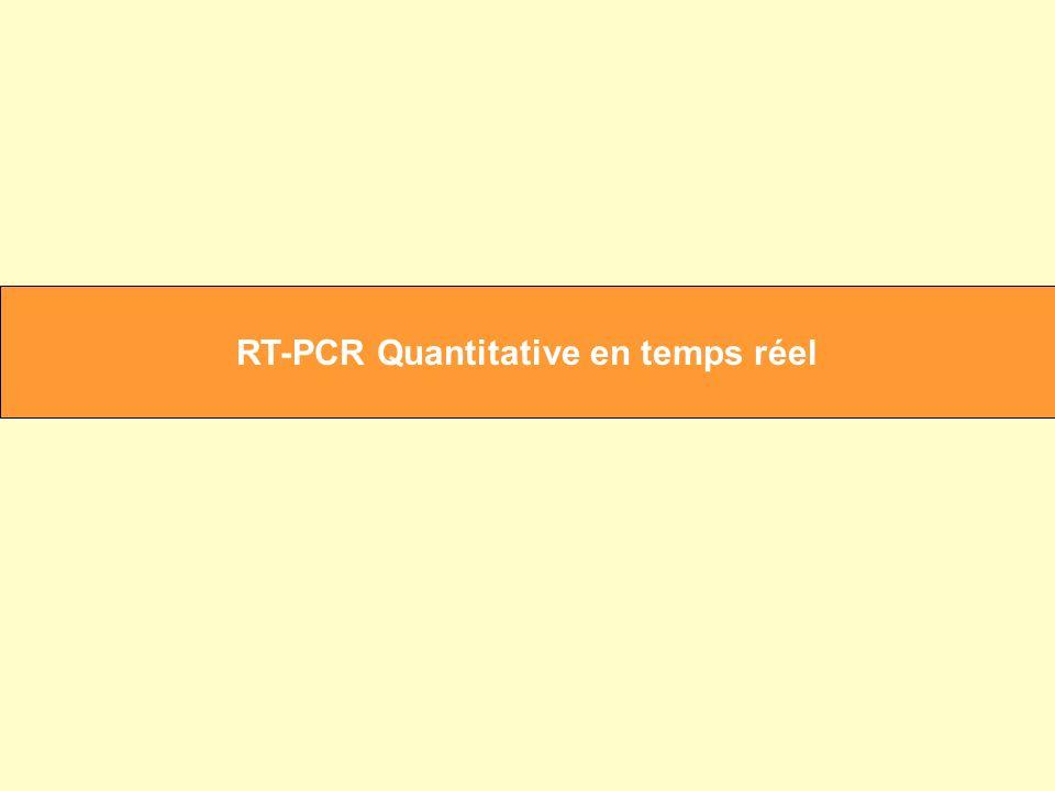 RT-PCR Quantitative en temps réel