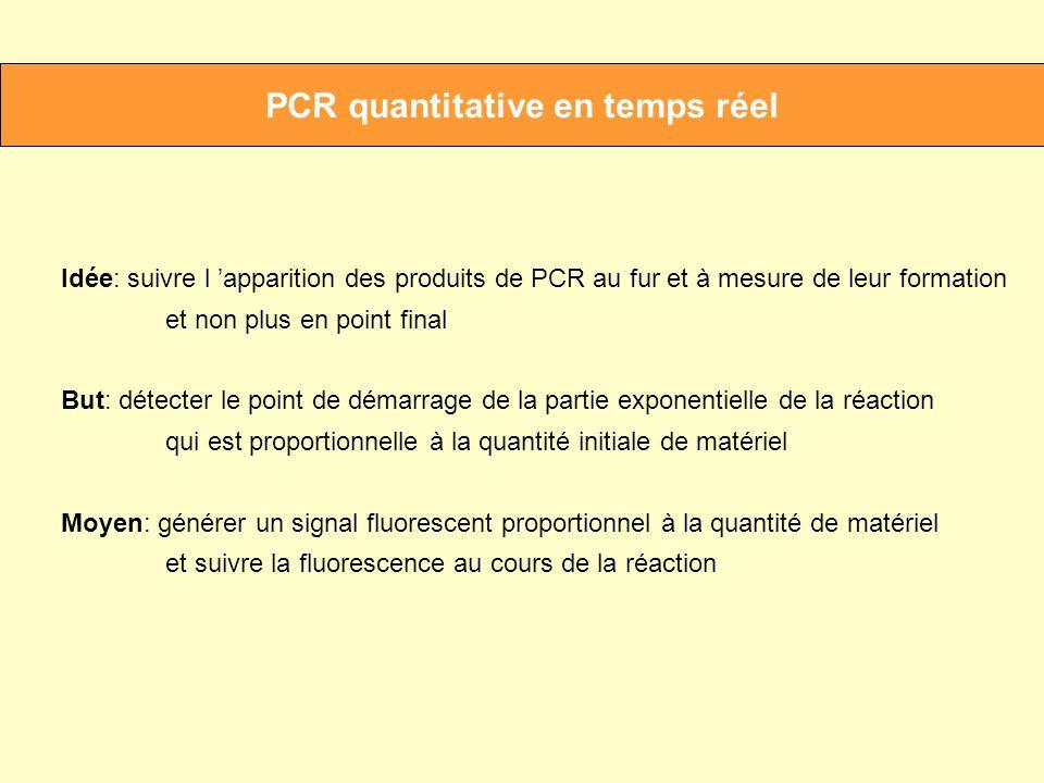 PCR quantitative en temps réel