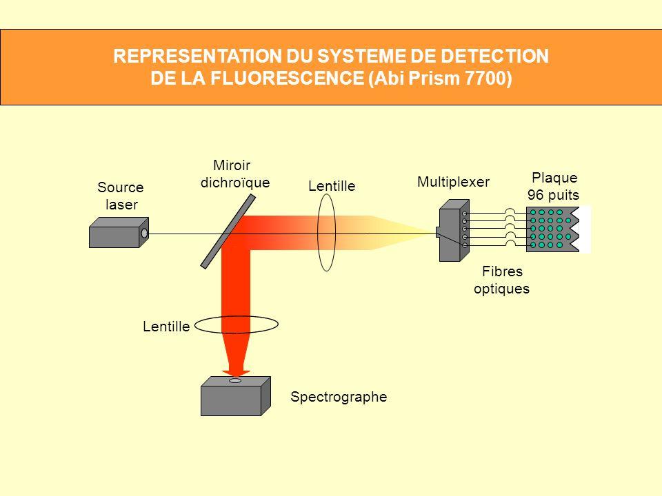 REPRESENTATION DU SYSTEME DE DETECTION DE LA FLUORESCENCE (Abi Prism 7700)