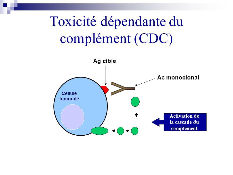 Toxicité dépendante du complément (CDC)