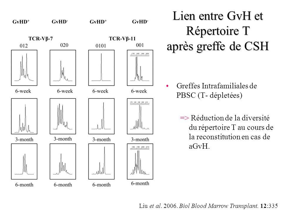 Lien entre GvH et Répertoire T après greffe de CSH
