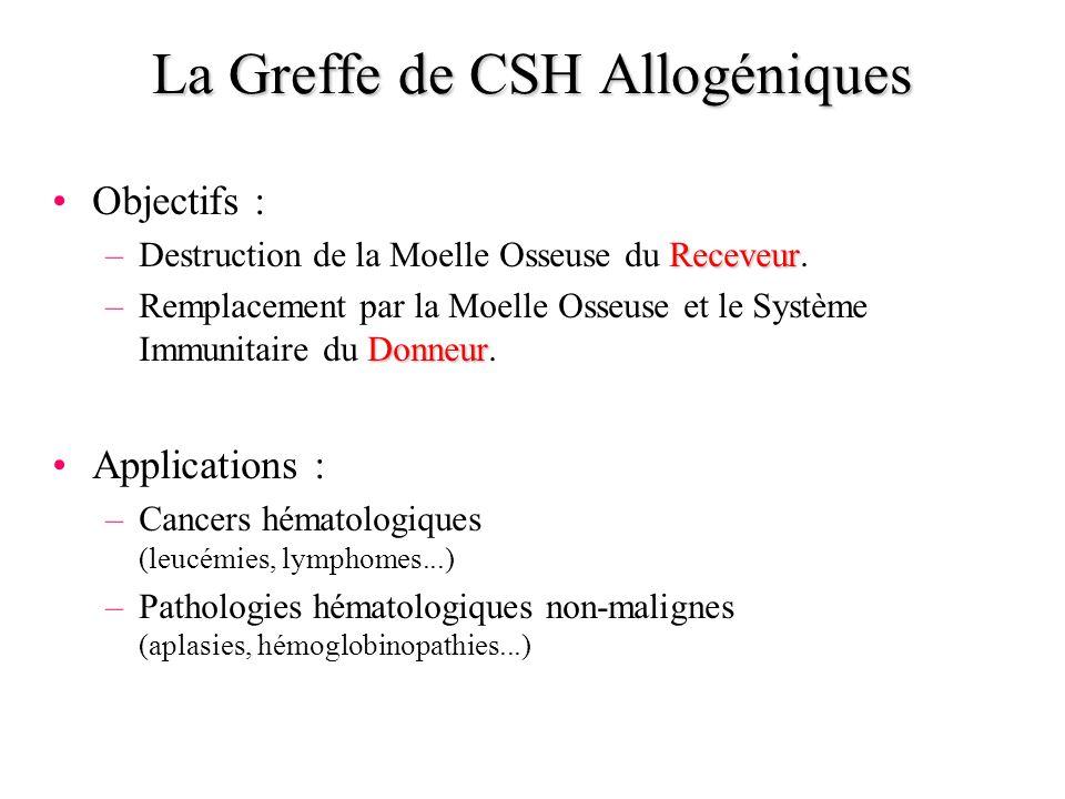 La Greffe de CSH Allogéniques