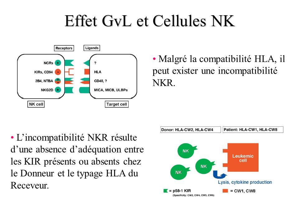 Effet GvL et Cellules NK