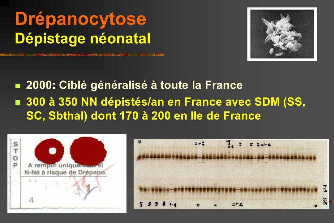 Drépanocytose Dépistage néonatal