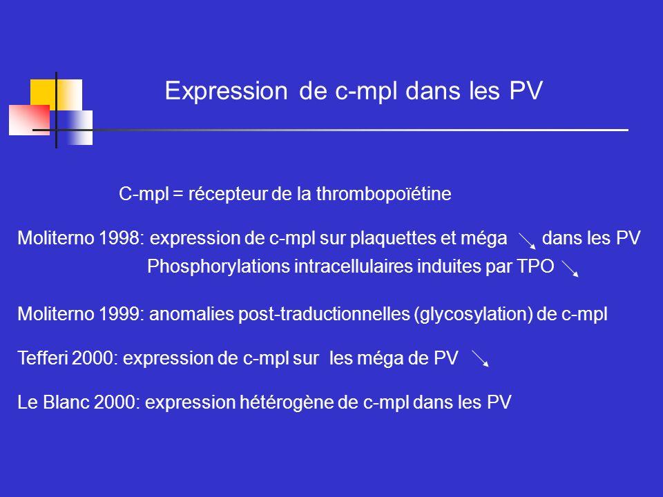 Expression de c-mpl dans les PV