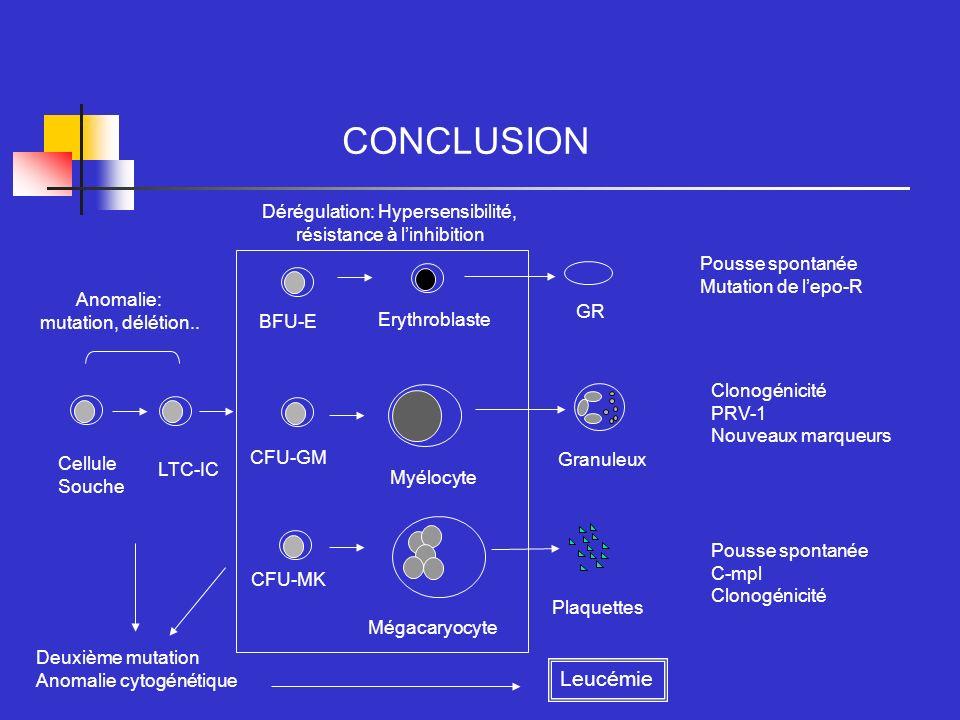 CONCLUSION Leucémie Dérégulation: Hypersensibilité,