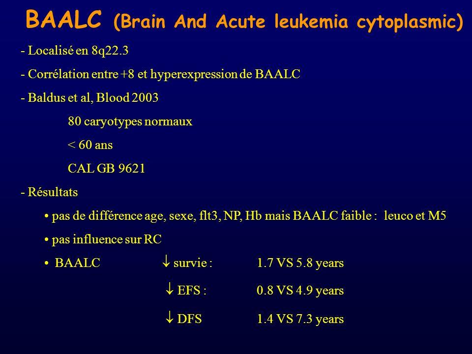 BAALC (Brain And Acute leukemia cytoplasmic)