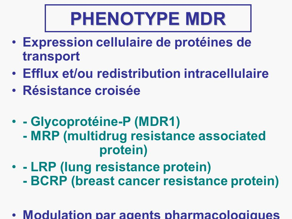 PHENOTYPE MDR Expression cellulaire de protéines de transport