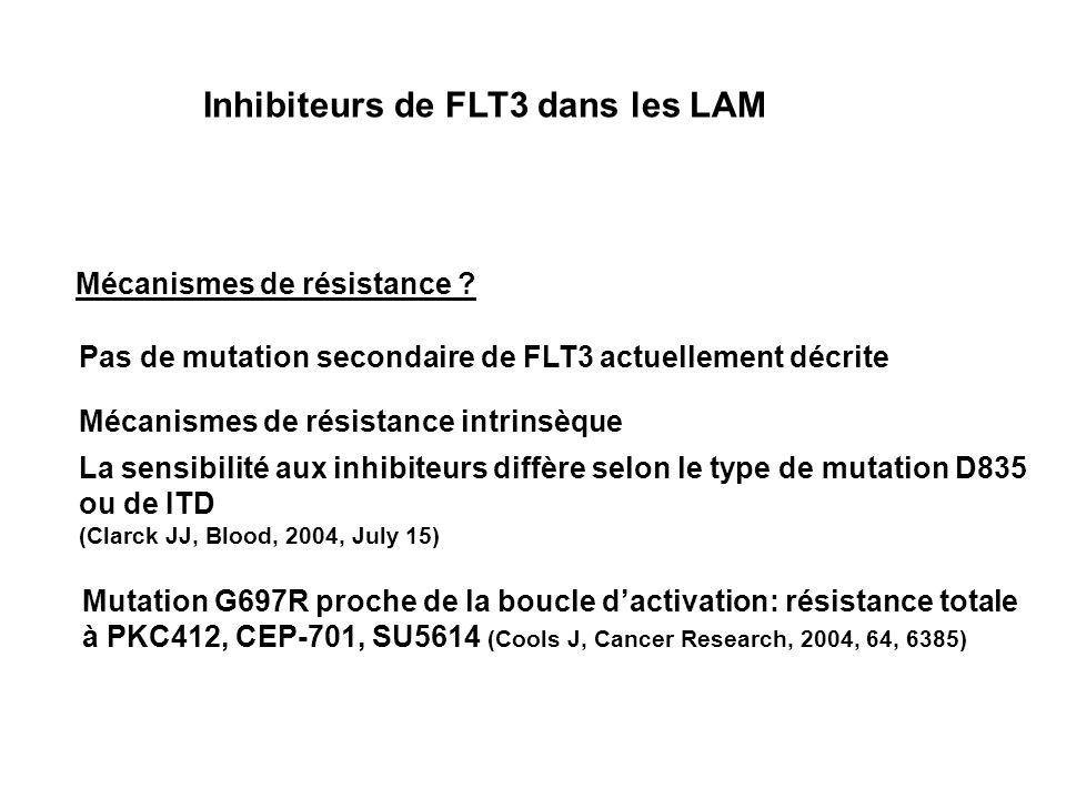 Inhibiteurs de FLT3 dans les LAM