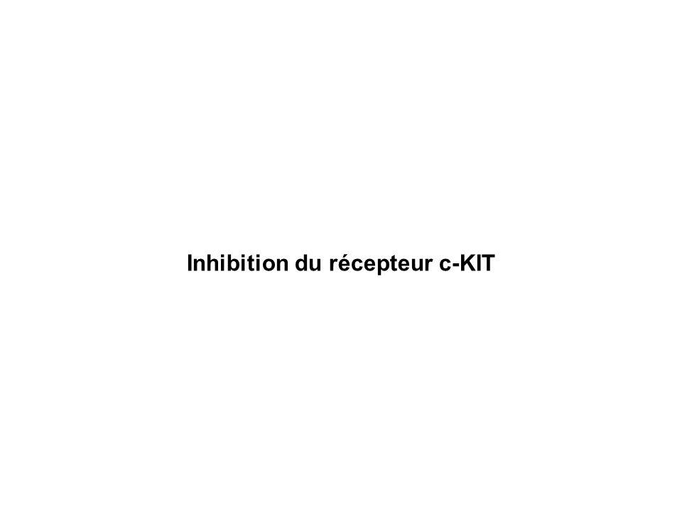 Inhibition du récepteur c-KIT