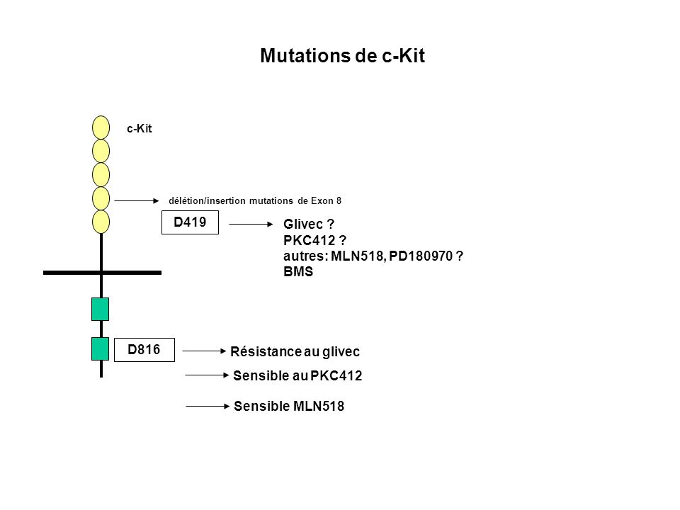 Mutations de c-Kit D419 Glivec PKC412 autres: MLN518, PD180970